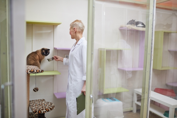 Pet-Boarding-for-Cats-and-Dogs